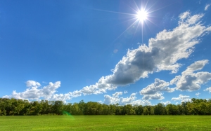 sunny-day-landscape