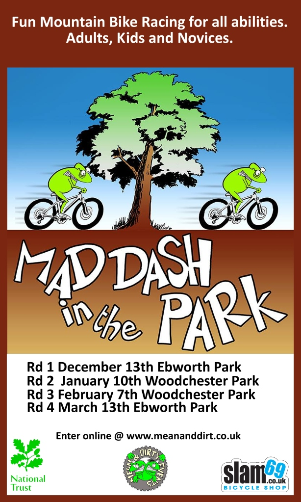 Mad Dash in the Park flyer